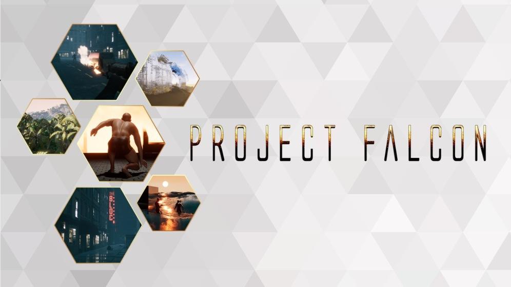 Project Falcon